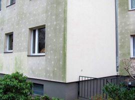 Moradia em Berlin após 6 anos